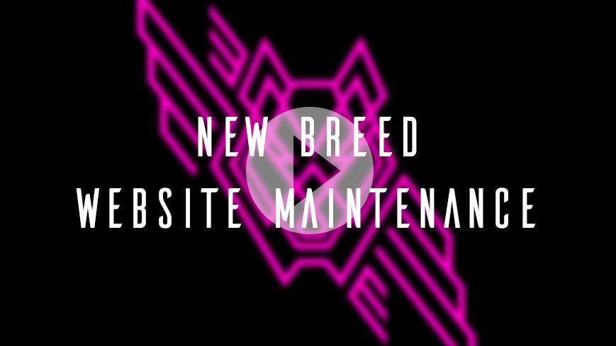 Website Maintenance. IT'S F*!@&ING IMPORTANT.